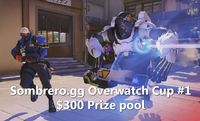 The first Overwatch tournament is starting in just 1 hour!