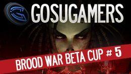 GGplay SCBW BETA Cup #5